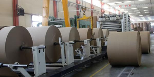 SECTORPromueven industria del papel y cartón