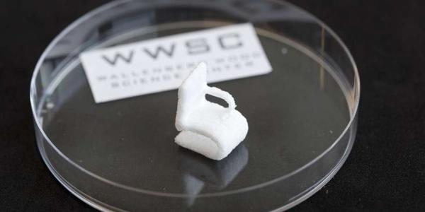 TECNOLOGÍA Impresión 3D con celulosa