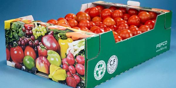INVESTIGACIÓN La fruta se mantiene fresca por más tiempo en bandejas de corrugado