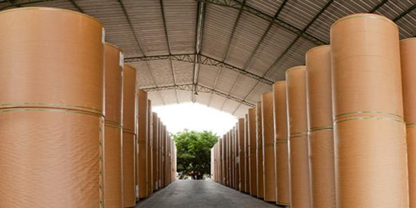 REGIONALBrasil: venta de cartón corrugado cae 0,3% en mayo