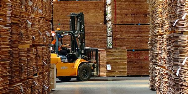 INTERNACIONALEE.UU.: Anticipan crecimiento del mercado corrugador para 2019