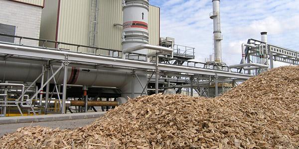 biomasa 2w