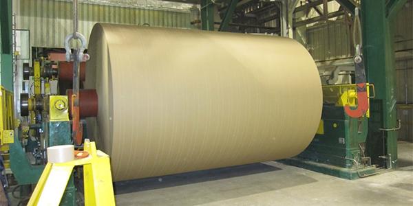 INTERNACIONALEEUU: La industria de cartón para corrugar sigue en alza