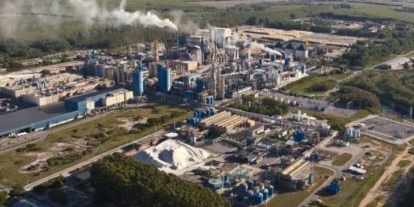REGIONALBrasil: nace la nueva Suzano, la mayor productora de celulosa del mundo