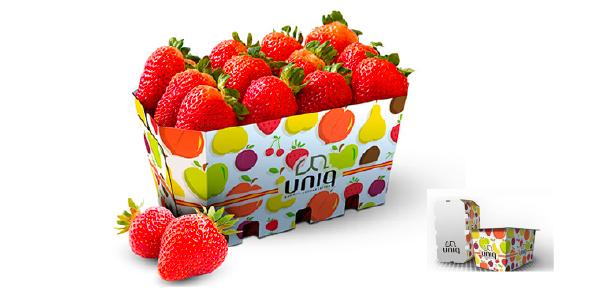 Bandejas sostenibles en cartón corrugado para Frutas y Hortalizas