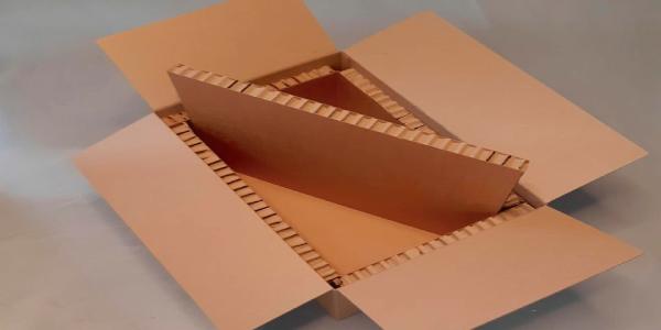 Innovador envase para alimentos congelados de corrugado y hexacomb