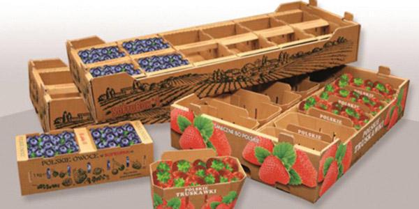 SK-Fruit-traysw